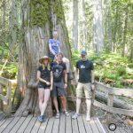 Road Tripping Western Canada