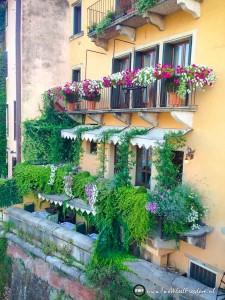 Italie-vakantie-voor-website-233