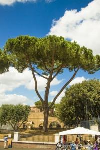 Italie16-voor website-381