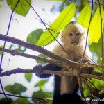 A Family Road Trip in Costa Rica